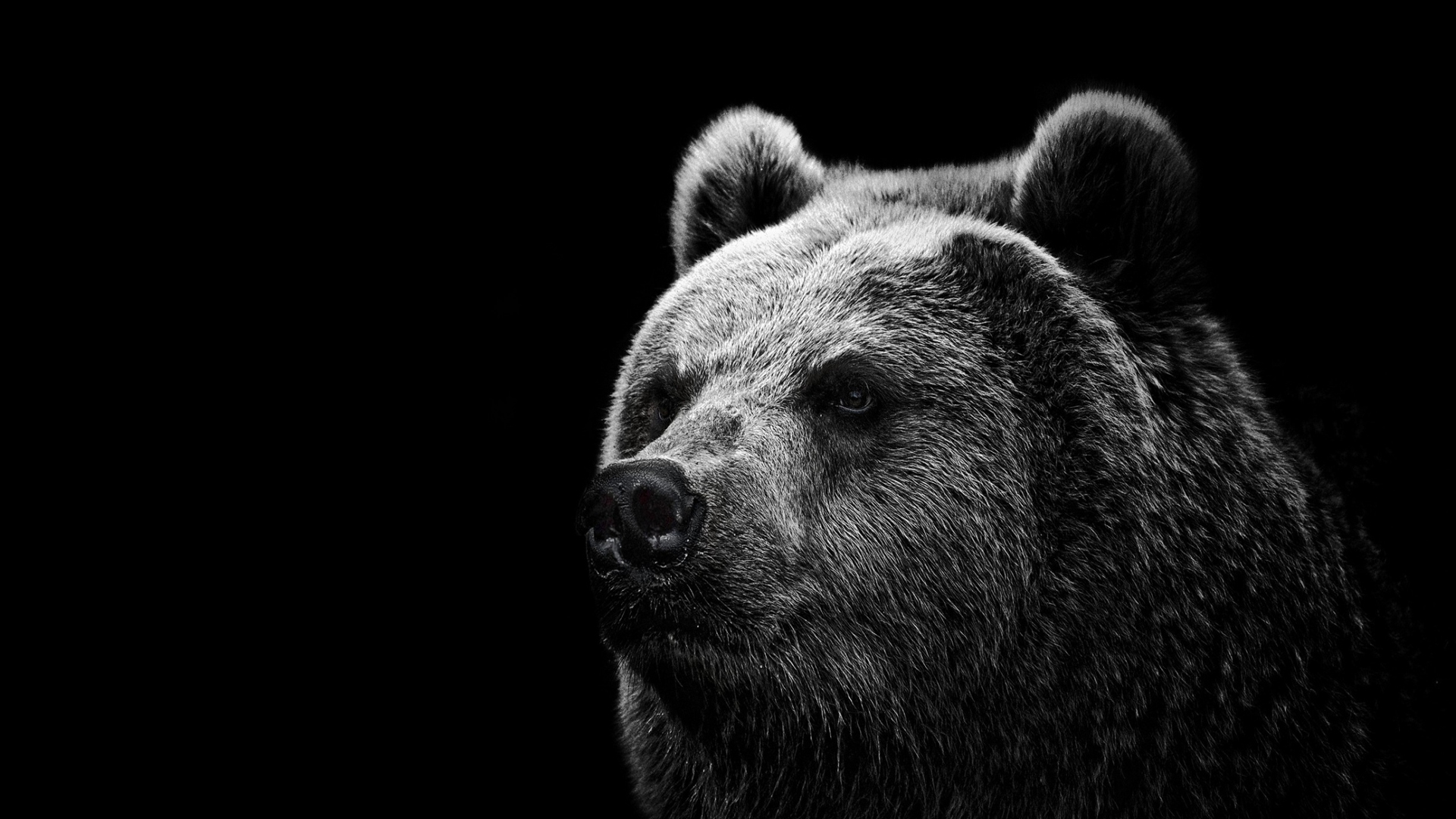 98 best images about BOYDS BEARS on Pinterest | July 15, Red hat ...